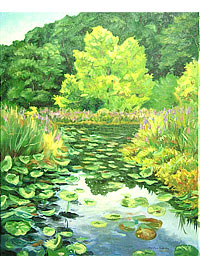 Yellowwood Lilypads